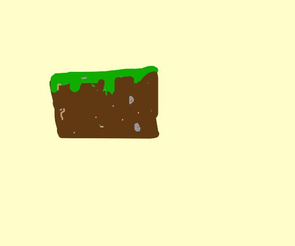 Minecraft grass