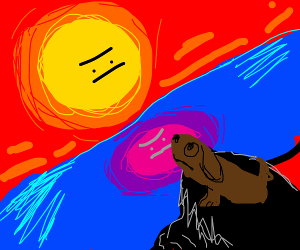Sun Is Judging The Dog