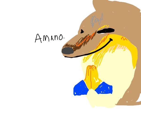 Ameno, dear yellow-orange fox!