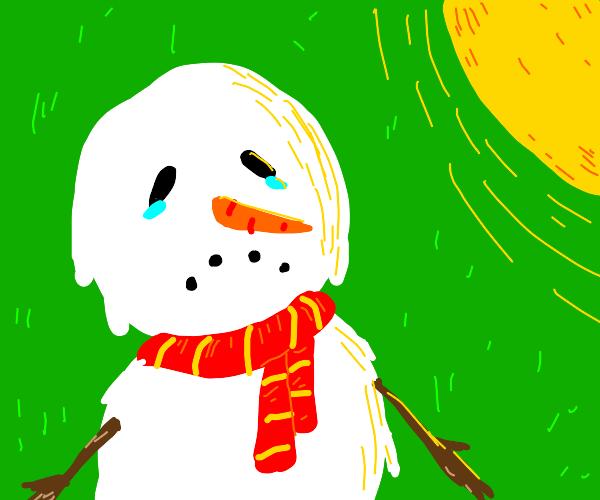 snowman melting in the sun