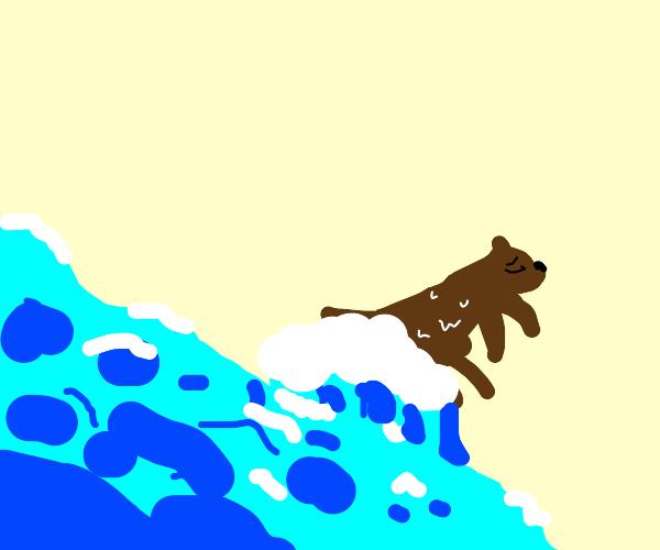 washed-up otter