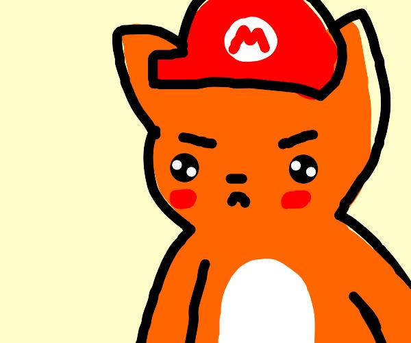 cat mario is grumpy