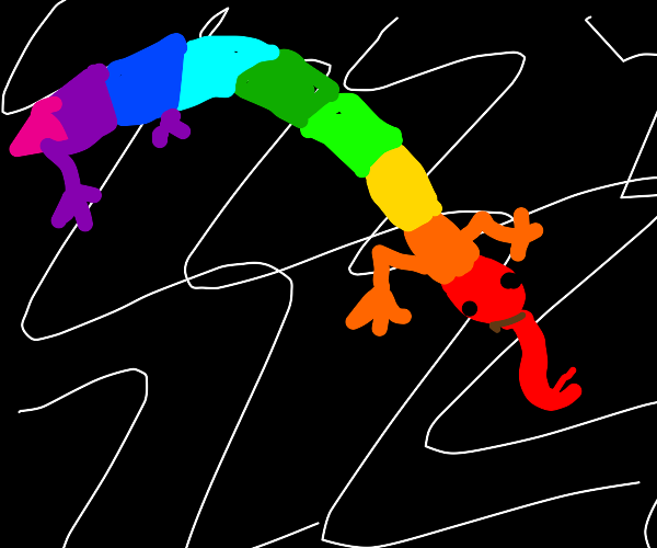 rainbow snake lizard thing