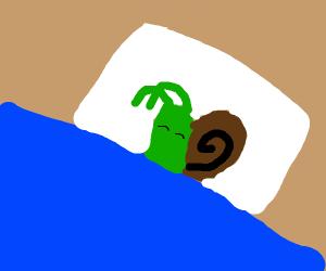 snail in a blanket