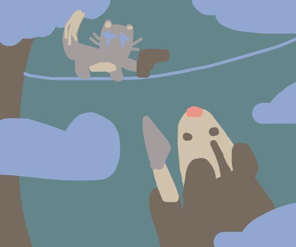 kitty vs. possum fight