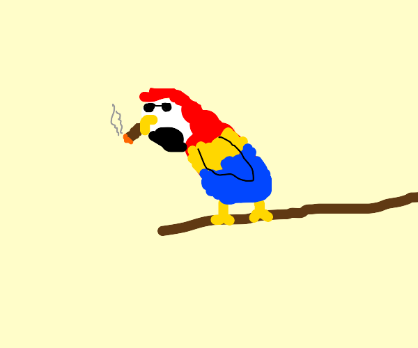 parrot lookin' cool with a cigar