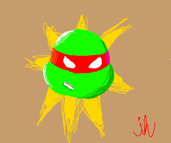 angry ninja turtle