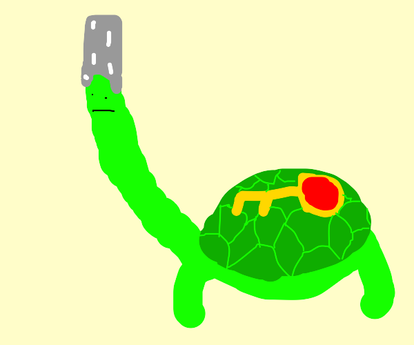 Turtle with a long neck