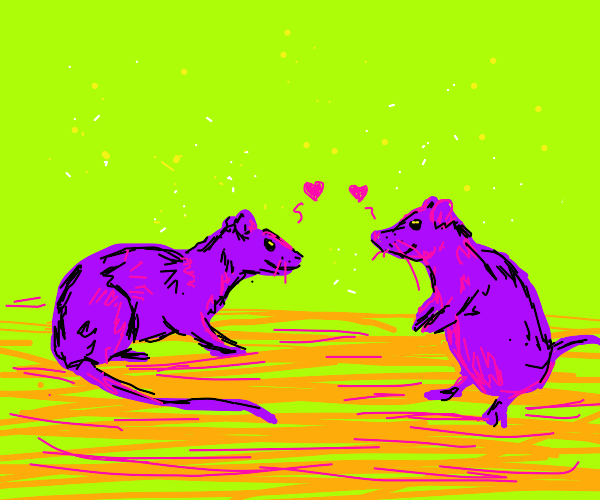 two purple rats smiling at each other