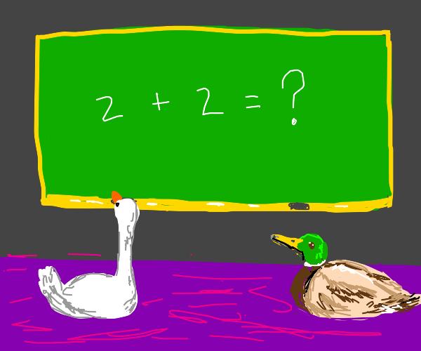 Teaching ducks math