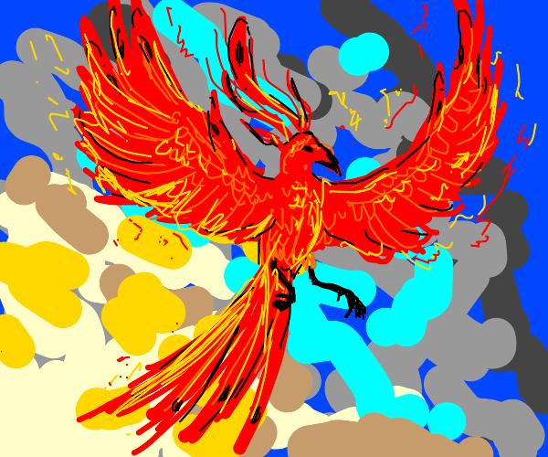 Phoenix (the bird, not the city)