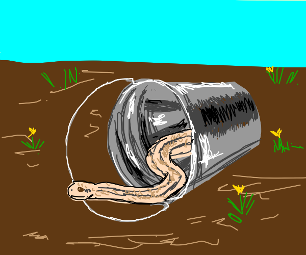 snake exiting a bucket