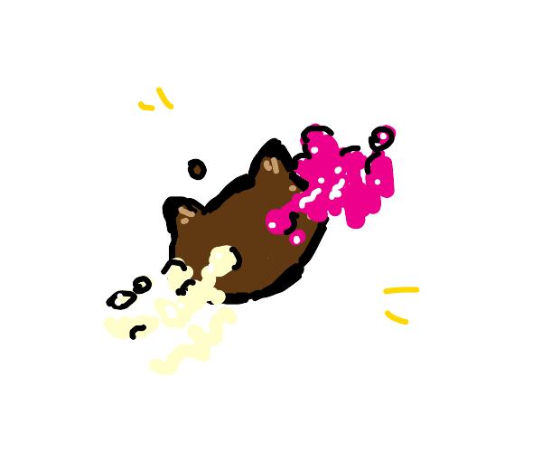 Flat cookie cat