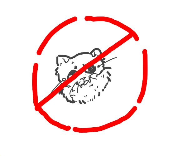 Cats are forbidden