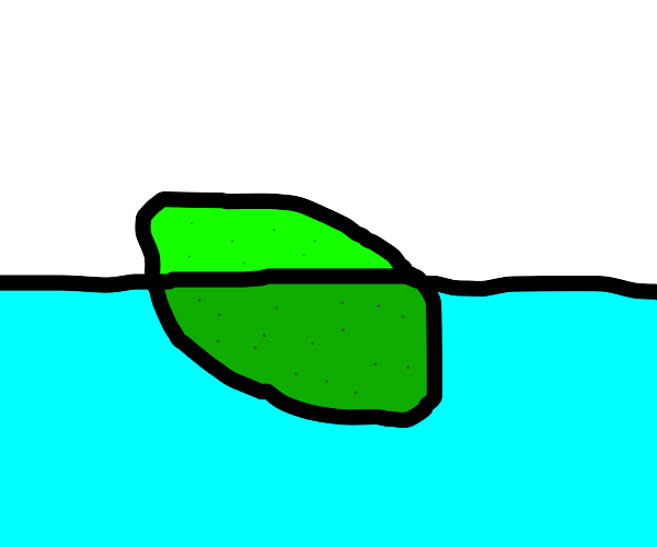 lime floating in water