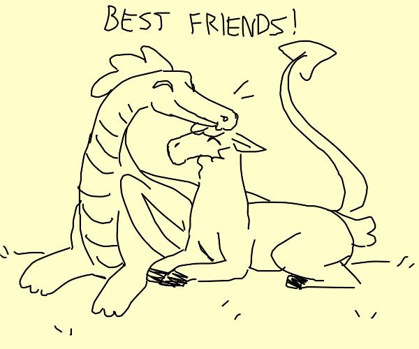 dragon llama friendship