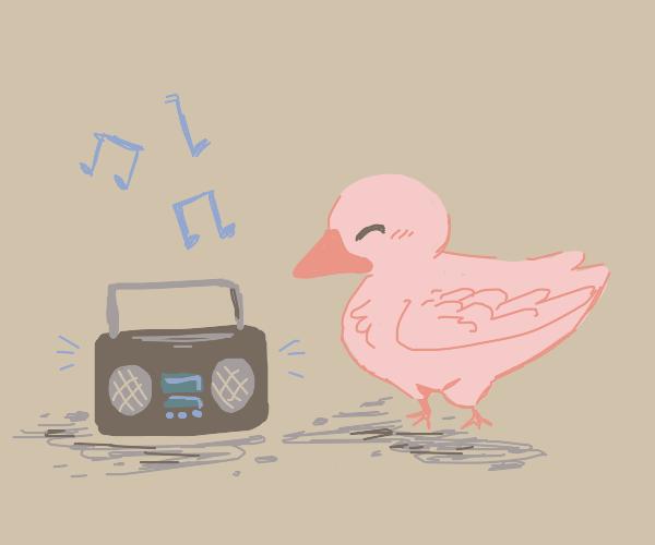 Dancing Minecraft Parrots :D Drawception