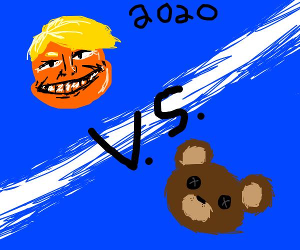 hmm Donald trump or teddy bear 2020?