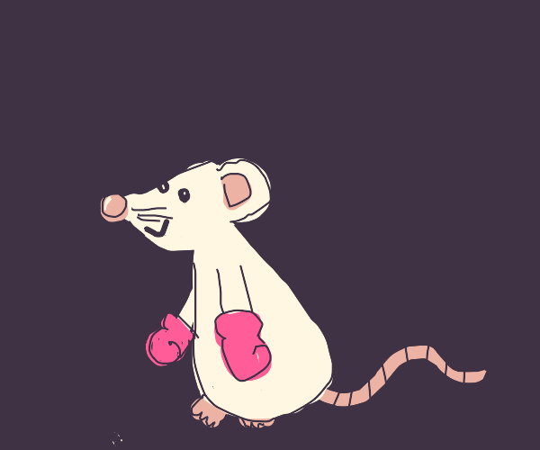 Mouse Wearing Boxing Gloves
