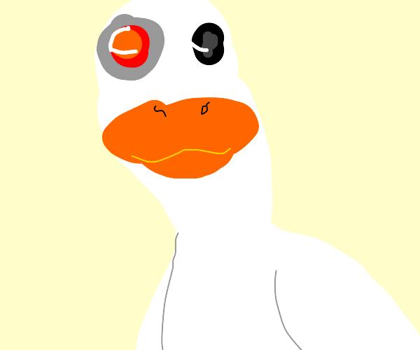 Cyborg Duck