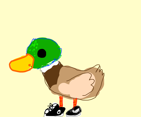 A duck wearing shoes.