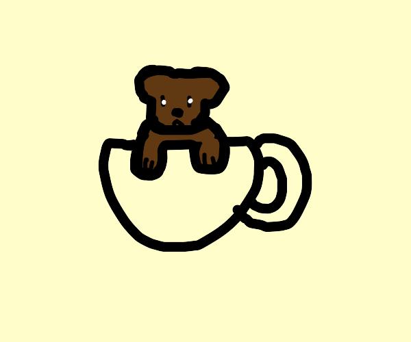 Bear in a teacup
