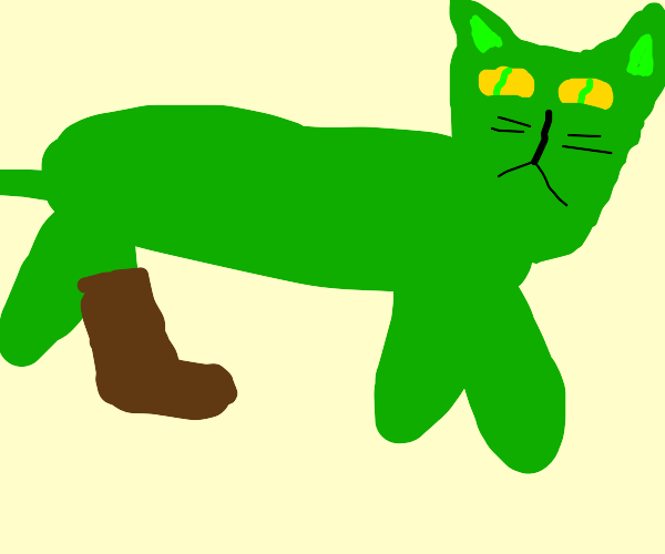 Green cat with a single boot