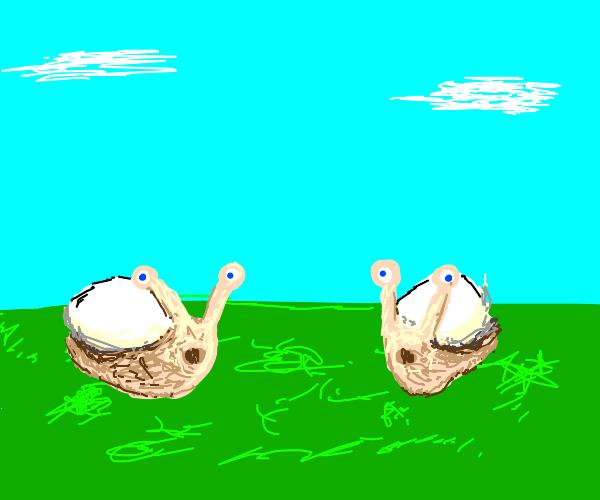 2 snails