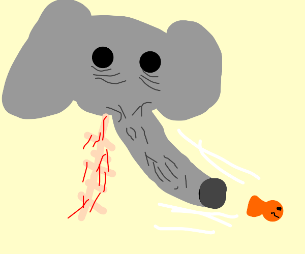 Floating elephant head inhales fish
