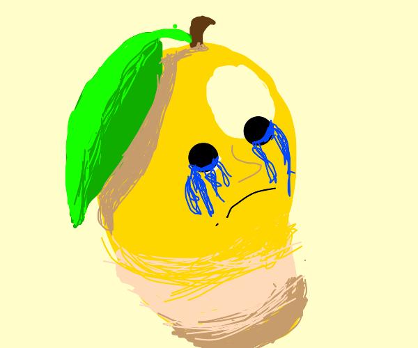 somebody hurt a mangos feelings