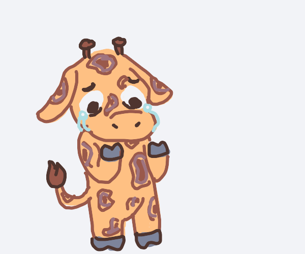 Sad giraffe inspects hooves