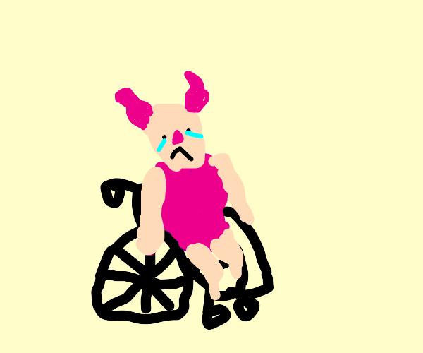 disabled piglet