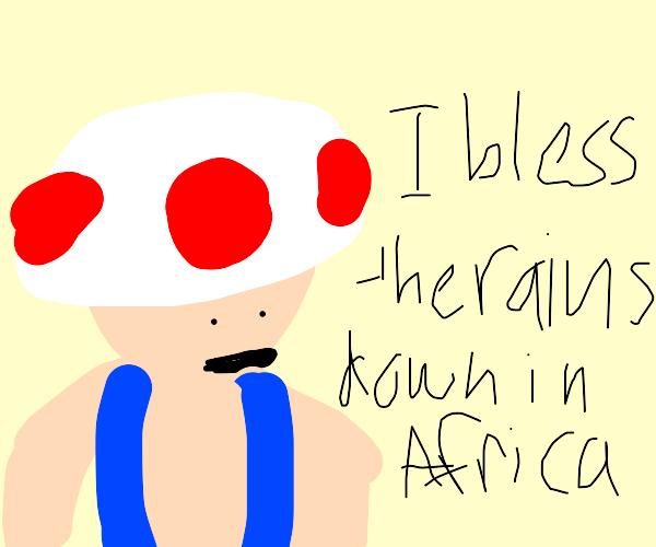 Toad sings Africa