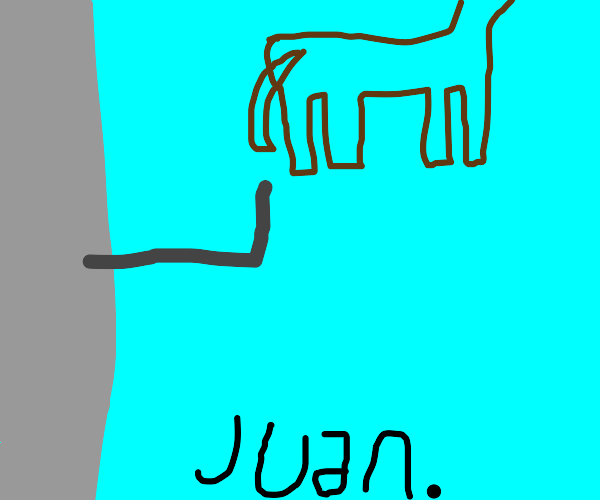 Juan the horse about to fly from balcony
