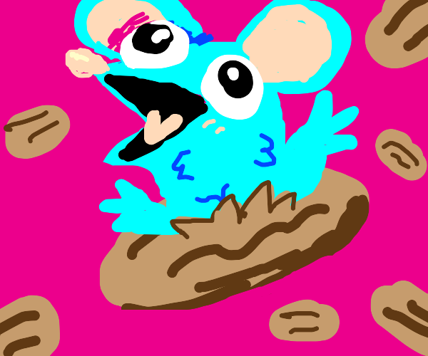 The blue rat has emerged from the pecan