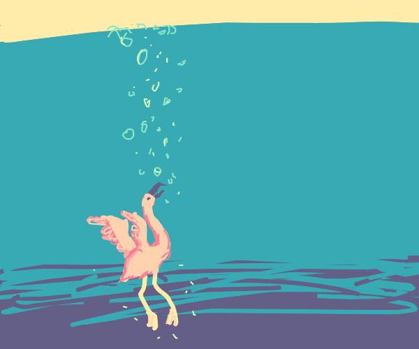 baby flamingo bird being drowned