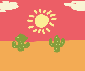 2 cacti in the desert