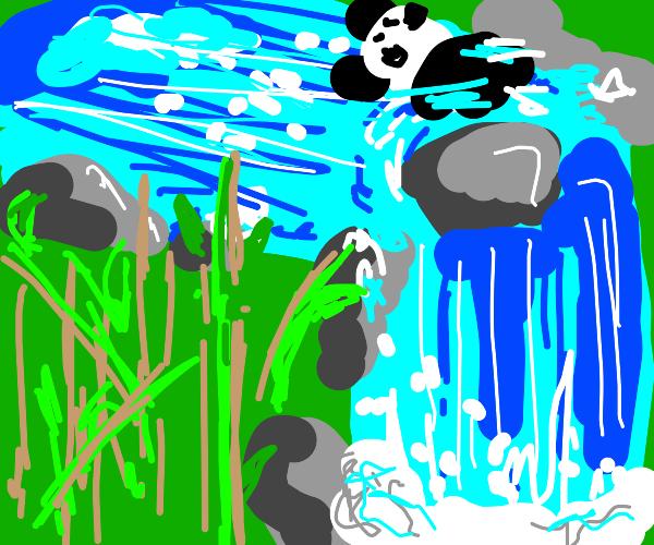 Panda about to fall down waterfall