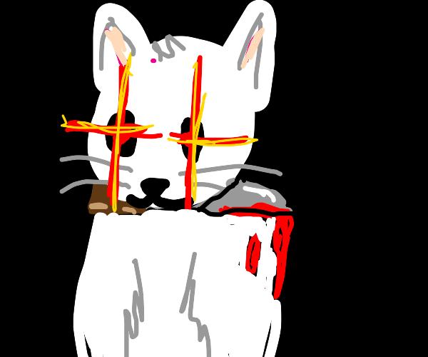 Cat has done a murder