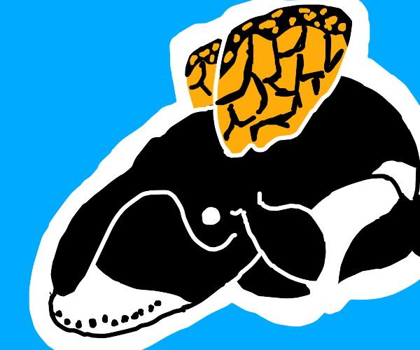 Monarch Whale