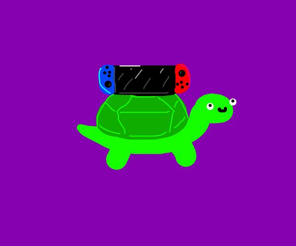 nintendo switch turtle