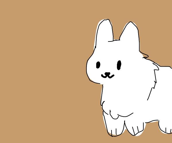 cute anime doggo