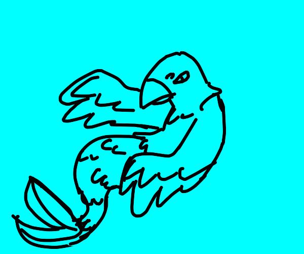 Fishbird mermaid