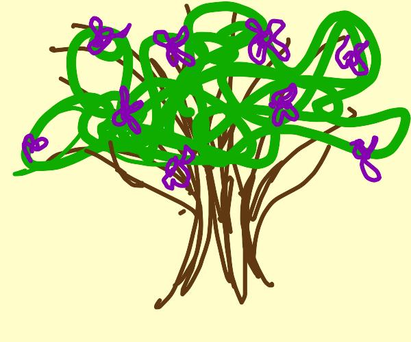 Tree with purple flowers on it