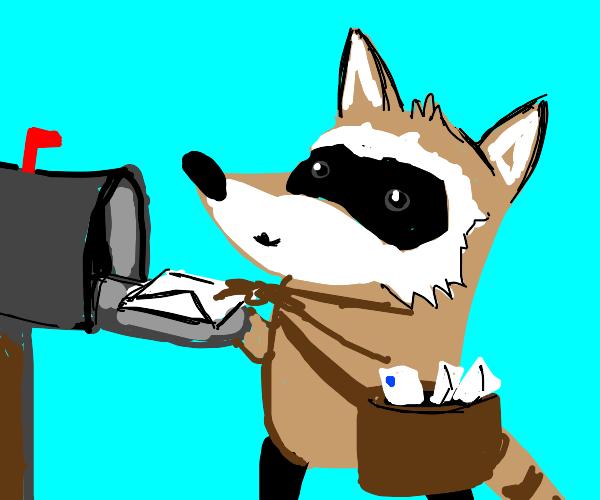 mailman raccoon w