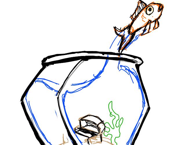goldfish is finally free...