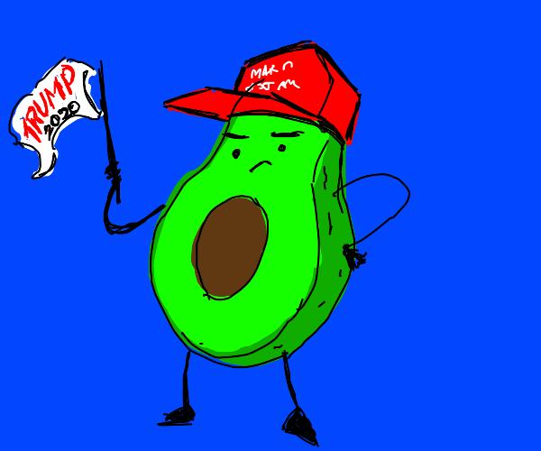 MAGA avocado