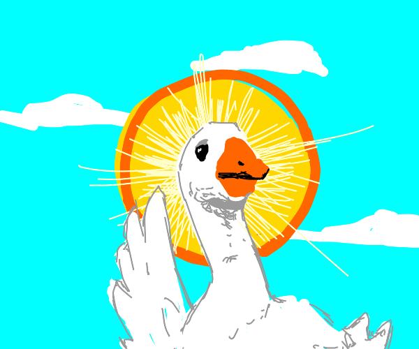 Saint goose