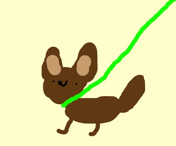 Pet Doggo