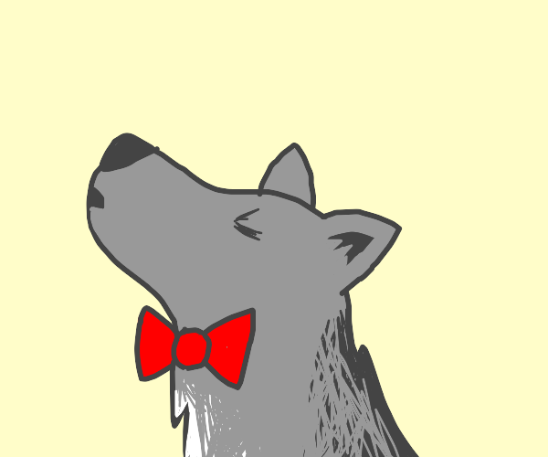 A grey wolf with a red bowtie